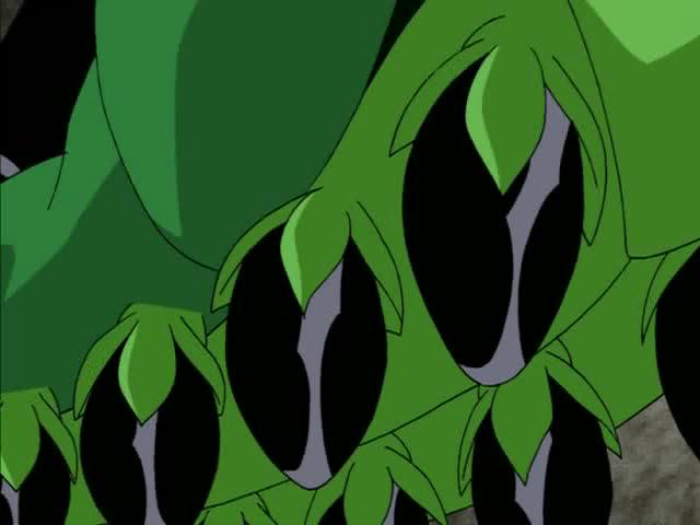 Wildvine_Seed_Bombs 1